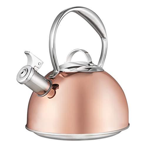 Caldera de silbido de Acero Inoxidable 304, Caldera doméstica, Gas Natural, Gas, Cocina de inducción, Universal WHLONG (Color : Copper Plating)