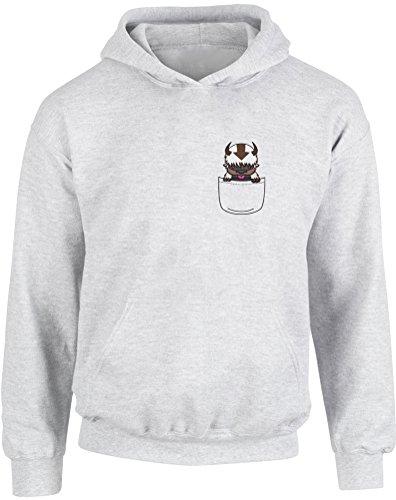 Appa Pocket, Gedruckt Kinder Kapuzenpullover - Grau/Transfer 12-13 Jahre