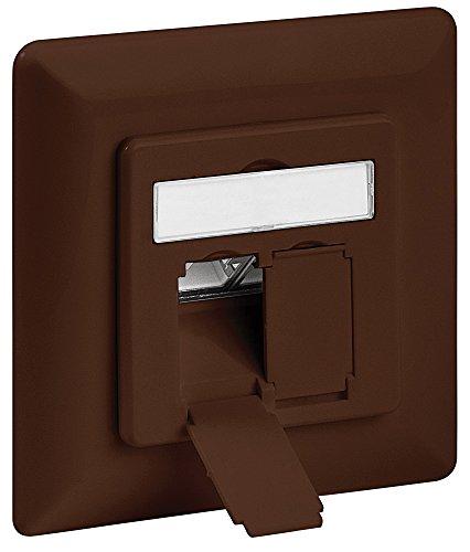 intellinet-771627-cat6a-unterputzdose-2-ports-ftp-braun