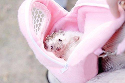 Yalulu Sac de transport en maille respirante avec bandoulière pour hérisson, hamster, souris ou lapin