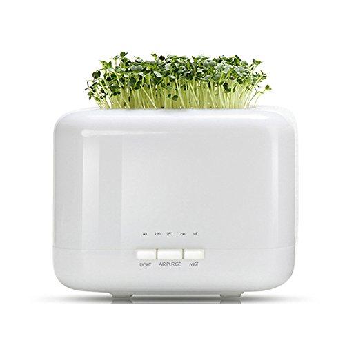 Aroma-super-topf (500ml Ultraschall Aromatherapie Luftbefeuchter Mini Schlafzimmer Schlafzimmer Stumm Büro Kreative Kleine Garten Topf Luftbefeuchter,White)