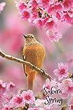 Sakura Spring: Cherry Blossoms Journal; Pink Sakura Spring Notebook; Japanese Sakura Cherry; Japan Travel; Bird on the B