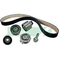 Online Automotive TBWPVWGOL20D 1022B Timing Belt Kit with Water Pump preiswert