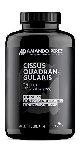 Cissus Quadrangularis Extrakt 2500 mg - 20% Ketosterone (90 vegane Kapseln) -