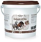 AniForte Gelenk-VETAL Pferd 1kg - Aktiv Gelenk-Kraft für Pferde, Gelenk-Pulver Vital mit Teufelskralle, Ingwer, Weizenkleie, Unterstützung Gelenke, Bewegung, Wohlbefinden, Vitalität, Stoffwechsel