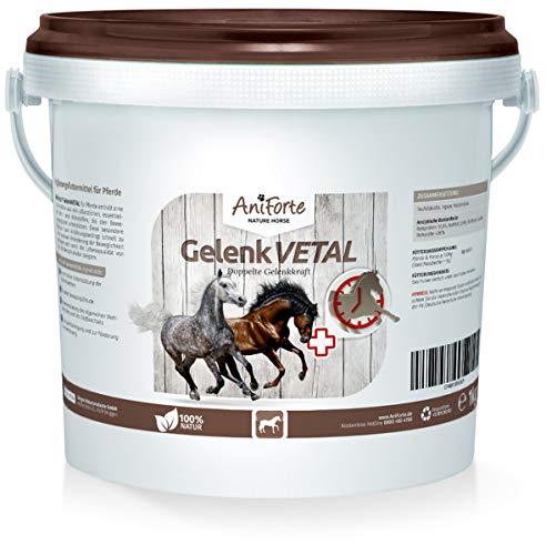 AniForte Gelenk-VETAL Pferd 1kg - Aktiv Gelenk-Kraft für Pferde, Gelenk-Pulver Vital mit Teufelskralle, Ingwer, Weizenkleie, Unterstützung Gelenke, Bewegung, Wohlbefinden, Vitalität, Stoffwechsel -