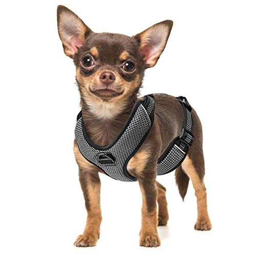 Zellar No Pull Dog Harness, Adjustable Breathable Reflective Soft Padded Dog Vest Harness with Handle for Training Outdoor Activities, Black, Extra Small