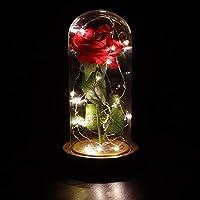 Anaoo Rosa di seta con luce a LED in cupola di vetro su base di legno per Regalo di Festa della Mamma, regali san valentino, regalo per mamma compleanno regali per anniversario rosa della bella e la bestia per nonna Mamma