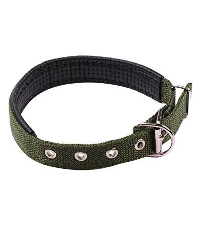 ZiXing Collar de Perro Cómodo y Duradero, Fabricado con lo que lo...