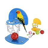 Pet Bird Parrot Mini Basket Rack Training sviluppare intelligenza Uccello, Giocattoli per parrocchetto Budgie Cockatiel Cage