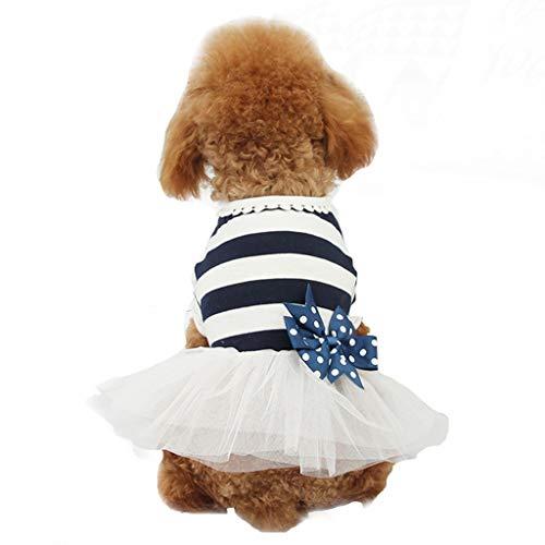 Unbekannt Liang Haustierkleid für Hunde und Katzen, Prinzessinnen-/Hochzeitskleid, Sommer, Teddybär, kleine Hunde, Katzen, Haustier Frühling dünn