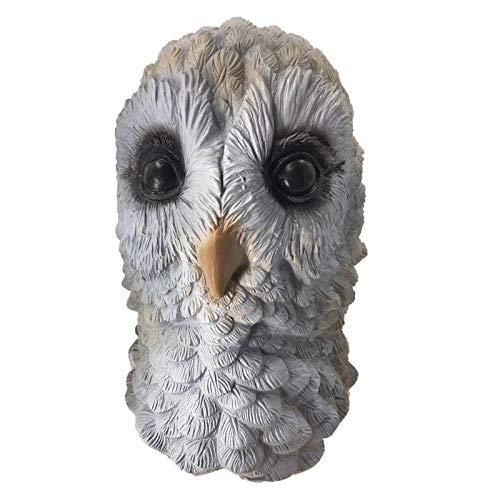 Für Kostüm Niedlichen Erwachsene Tier - qiaoaoa Adler Vogel Tier Latex Maske Weißer Vogel Niedlichen Tier Erwachsene Und Kinder Halloween Cosplay Kostüm Requisiten