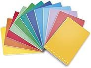 Pigna Monocromo 02298874M, Quaderno Formato A4, Rigatura 4M, Quadretti 4 mm per 4° e 5° Elementare Medie e Sup