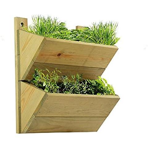 2Premium–Estantería de madera–Maceta Macetero, invernadero para colgar en la pared de alta calidad y hierbas rack. Se puede utilizar para plantas de cultivo de hierbas o en su cocina o en cualquier lugar de su casa. Idea de