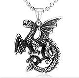 Baoleiju - Collar con Colgante Vintage Pterosaur de fantasía, de Acero Inoxidable, con joyero, Collar Fantasy Final para niños, niñas (Acero)