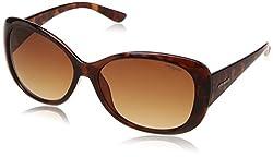 Polaroid Polarized Oval Womens Sunglasses - (P8317 0BM 58LA|58|Brown Color)