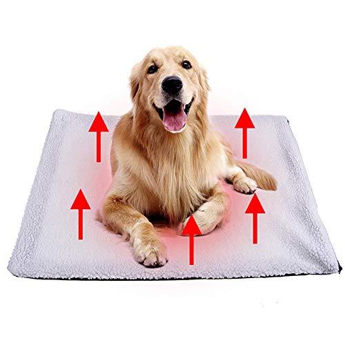 Tolyneil Cojín calefacción Mascotas Perros Gatos