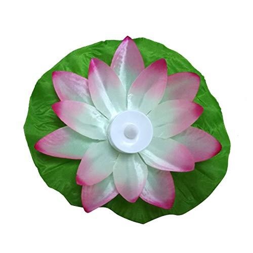 liche Lotus, Farbwechsel, schwimmend, Blumen, Wasser, Schwimmbad, Laternen, (Rose) ()