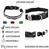 My Trend Pets LED-Hundehalsband, sicher und sichtbar, super hell, wiederaufladbar, wetterfest, hohe Sichtbarkeit und erhöhte Sicherheit