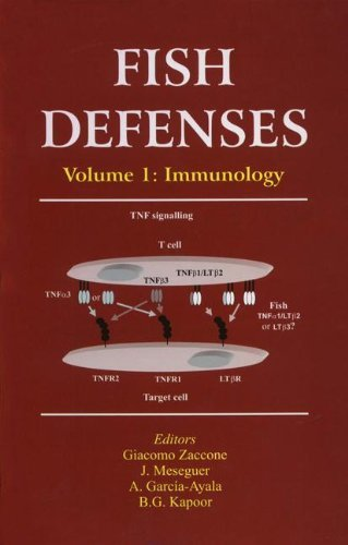 Fish Defenses Vol. 1: Immunology: Immunology v. 1 (Teleostean Fish Biology: A Comprehensive Examination of Major Taxa) by Giacomo Zaccone (Editor) (1-Jan-2009) Hardcover