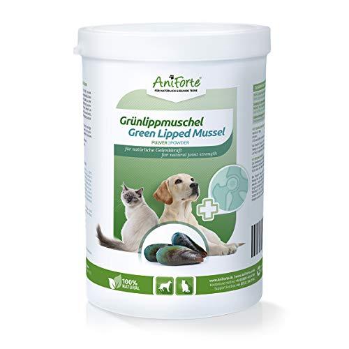 AniForte Grünlippmuschel-Pulver 500g für Hunde und Katzen, Reines Grünlippmuschel-Extrakt Perna Canaliculus, Muschel-Extrakt ohne Zusätze oder Konservierungsmittel, Natürlich Effektiv