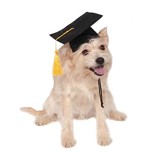 py Doctor Cap Abschluss Kappe Student Quasten Grad Hut Heimtierbedarf 6,24 * 6,435 * 3,51