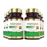 BodyFokus SymBiotique Vital Actif - Un partenaire solide pour vos intestins - 6 boîtes