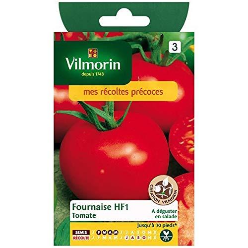 Vilmorin - Sachet graines Tomate fournaise HF1