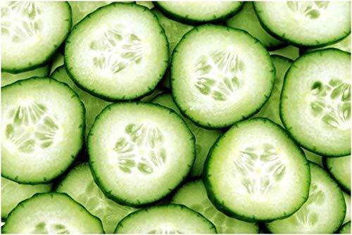 PLAT FIRM GRAINES DE GERMINATION: 100 - Graines: concombre vert long (sous-continent indien) - 35-45 jours - 9 1/2 pouces