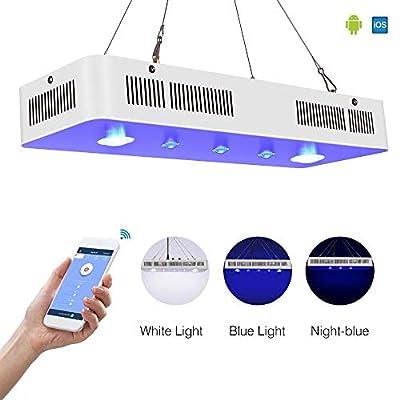 ZWD Eclairage Aquarium WiFi COB + Objectif 169w Marine LED Aquarium Lumière pour Corail Récif De Pêche Tank Dimmable Aquarium LED Luminaire