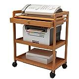 Shelf LYG Küchenwagen Rack-Drucker-Rack, Schreibtisch-Datei Doppel-Lagerregal Modernen Minimalistischen Multi-Layer-Rack-Handy-Rack 60 * 32 * 80cm Küchenregal