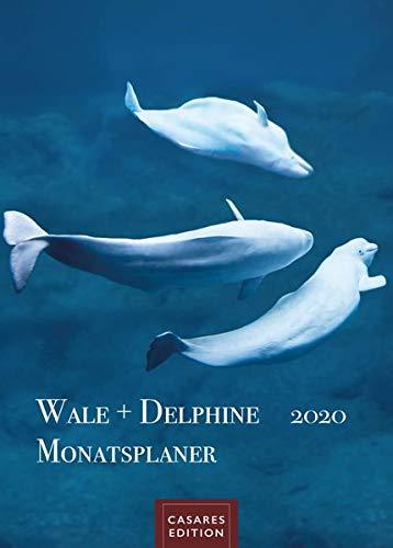 Wale und Delphine Monatsplaner 2020 30x42cm
