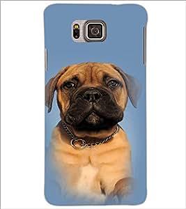 PrintDhaba Cute Dog D-4913 Back Case Cover for SAMSUNG GALAXY ALPHA (Multi-Coloured)
