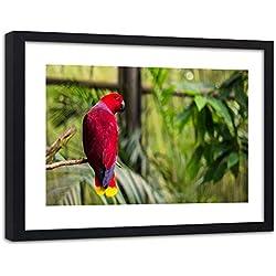 Feeby Cuadro con Marco XXL Loro Arte Moderno Pájaro Animal Naturaleza Rojo 120x80 cm