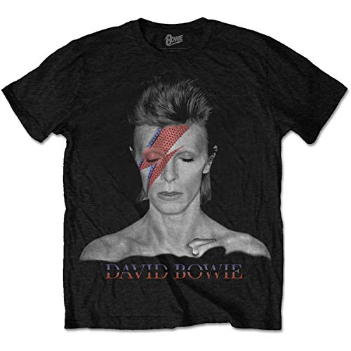 David Bowie Aladdin Sane T-Shirt for Men, S to XXL