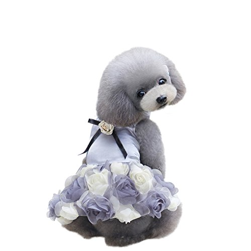 PanDaDa Hund Welpen Katze Drei-Farben Rosen Rock Sommer Bowknot Spitze Prinzessin Rock Partei (Kostüm Rock Blauer Pudel)