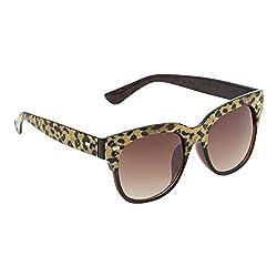 Olvin Womens Wayfarer Sunglasses Brown (OL313-02)