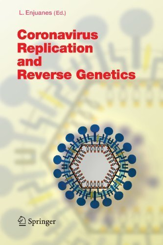 Coronavirus Replication and Reverse Genetics (Current Topics in Microbiology and Immunology) (2010-01-14) par unknown