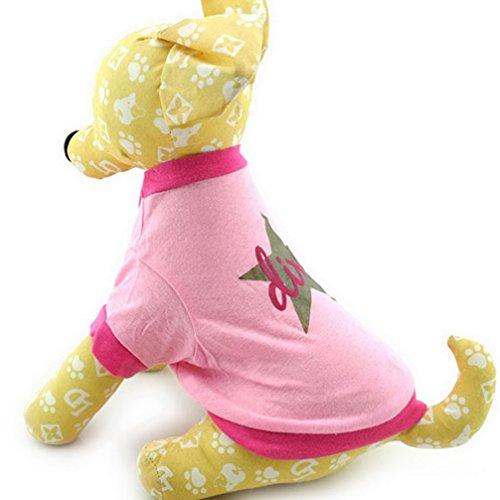 Dive Kapuzen-jacke (ranphy Kleine Hunde T-Shirt Puppy Kleidung für Mädchen Diva Star T-Shirt Pink)
