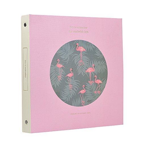 che Hartschale Papier Foto Album Flamingo 100Taschen hält 3x 5Fotos, Pink flamingo pink (Halloween-papier-geschenk-taschen)