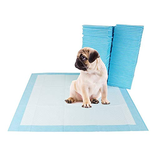 Youyababay Tappetini Igienici Assorbenti per Animali Domestici, per l'addestramento di Cagnolini e Altri Animali Domestici, 40 pz, 60 x 60cm