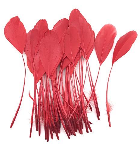 ERGEOB schwarz abgestreift Coque Schwanz Federn 10-15cm/4-6 Zoll Länge Basteln Material Kopfschmuck Brosche Material rot (Rote Und Schwarze Schwanz)