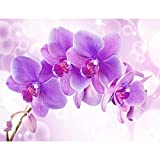 Fototapete Orchidee Lila Violett 396 x 280 cm Vlies Wand Tapete Wohnzimmer Schlafzimmer Büro Flur Dekoration Wandbilder XXL Moderne Wanddeko - 100% MADE IN GERMANY - Runa Tapeten 9012012b