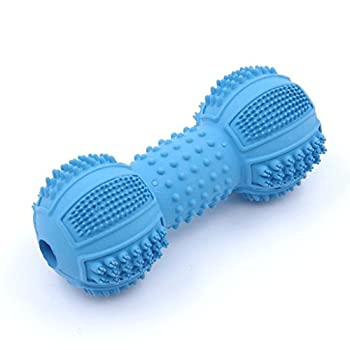 ThinkPet Jouet à mâcher multifonctionnel en caoutchouc pour chien,brosser des dents et massage de la gencive, Bleu, Haltère M