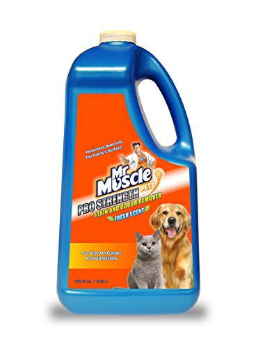 mr-muscle-pro-stain-remover-fresh-scent