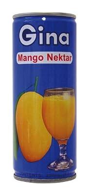 Gina Mangonektar, leicht gesäuert; mind. 35% Fruchtsaftgehalt, 10er Pack (10 x 250 ml Packung)