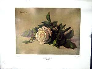La Peinture À L'huile 1938 de Nettlefold Grundy Rose Blanche Fleurit Fantin-latour