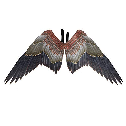 TTXLY Angel Eagle Wings Kostüm Cosplay Wings Angel Kostüm Wings Mardi Gras Dress Up-Karneval Party Animal Kostüm Masquerade Requisiten