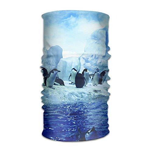 Preisvergleich Produktbild Penguins Dancing On Glacier Headwrap Unisex Headwear Headband Neck Scarf Microfiber Do Rag Cap Magic Head Scarf Bandana Cute Headdress Face Mask Neck Gaiter
