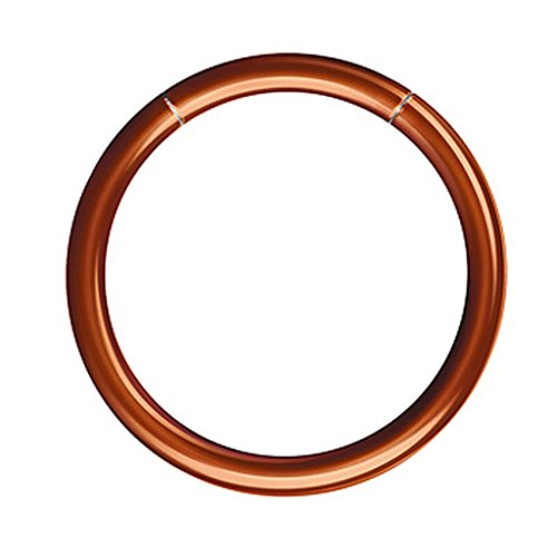 Piercingfaktor Universal Segment Piercing Segmentring Septum Tragus Helix Ohr Nase Lippe Brust Intim Smooth Ring 1,6 x 12mm Coffee (Ring Septum Braun)